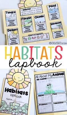 Interactive Lapbooks for the School Year Habitats Elementary Science, Science Classroom, Teaching Science, Science For Kids, Learning Activities, Kids Learning, Ecosystem Activities, Earth Science, Ecosystems Projects