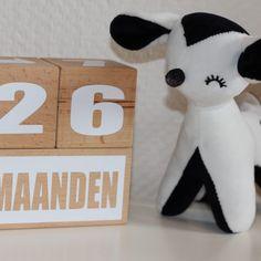 Mijlpaalblokken MDdesigns.nl