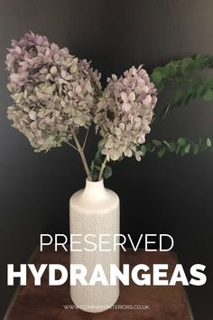 Preserved Everlasting Floral displays using amazing hydrangeas. These absolutely natural plants are cut preserved and frozen in time remaining in their natural state creating floral arrangements that will outlast ordinary live plants in years to come. #floraldecor #floraldisplaybaskets #floraldisplayideas #floraldisplays Money Tree Bonsai, Money Trees, Pink Hydrangea, Hydrangeas, Moss Decor, Ivy Wall, Moss Art, Preserved Roses, Container Plants