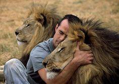 I wish I could hug a lion!