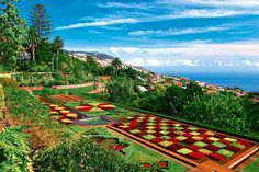 Funchal - Portugali - #Finnmatkat Madeiran upea luonto ja puutarhat! Herkullista ruokaa ja tottakai Madeira-viiniä ja mausteista kakkua jälkiruuaksi!