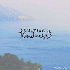 CULTIVATE KINDNESS —