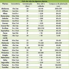 A HORTA DO JOÃO: Data sementeira, calendário lunar e ciclo vida plantas