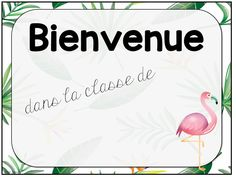 Affiches pour la porte de classe et étiquettes pour les bureaux des élèves. Thème tropical. Teaching French, Classroom Management, Flamingo, Education, Animation, Decorations, Disney, Socialism, Day Planners