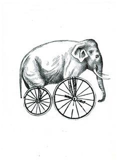 Elefante-bicicleta
