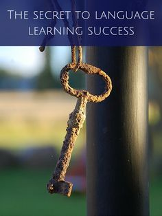 Are you learning a foreign language? Here's the secret to language learning success