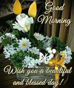 good morning greetings - good morning quotes _ good morning _ good morning quotes for him _ good morning quotes inspirational _ good morning wishes _ good morning beautiful _ good morning quotes funny _ good morning greetings Good Morning Dear Friend, Good Morning Love Messages, Good Morning Wednesday, Good Morning Cards, Good Morning Prayer, Cute Good Morning, Good Morning Flowers, Morning Blessings, Good Morning Picture