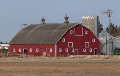 farm - Пошук Google
