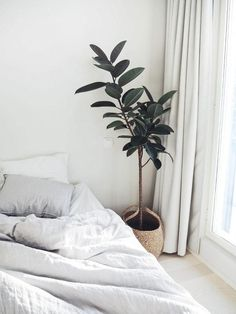 beautifully simple #HowToDoDecor