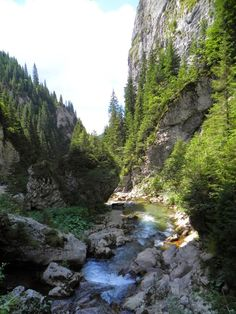 Bucegi mountains Visit Romania, Other Countries, Trekking, Places To See, Beautiful Places, River, Mountains, Country, Amazing