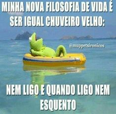 Expectativas x frustracao – Títulobeleza ctiadora do site Funny Animal Pictures, Funny Images, Beauty Quotes, Good Advice, Funny Jokes, Haha, Thoughts, Feelings, Sayings