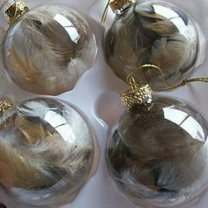 Hens molting? Don't let those feathers go to waste. Stuff them in some clear ornaments to add a little charm to your tree this year.