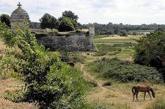 Les remparts de Brouage ( Vauban ), Charente- Mme.