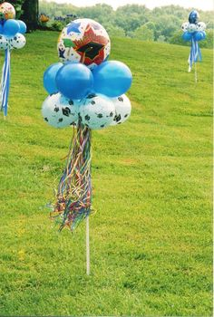 Graduation idea with balloons- put money in the balloons and put the stick in and pot and you have a cute gift!