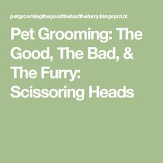 Pet Grooming: The Good, The Bad, & The Furry: Scissoring Heads