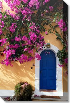 Our Blue Door Outdoor Canvas Art features a bright blue door with a gorgeous bougainvillea vine. Waterproof, UV protected and gallery wrapped outdoor art. Outdoor Walls, Outdoor Decor, Indoor Outdoor, Unique Doors, Cool Doors, Exterior Paint, Door Design, Wall Canvas, Wall Art