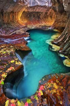"""Emerald pool at Subway, Zion National Park, Utah. This isn't part of Emerald Pools. It is called """"The Subway"""" Bring your asses out here you two and lets all go for an adventure! This is like an hour from my place here! Places Around The World, Oh The Places You'll Go, Places To Travel, Around The Worlds, Magic Places, Photos Voyages, Parc National, Zion National Parks, American National Parks"""