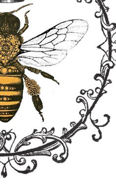 Queen Bee Tattoo, Honey Bee Tattoo, French Images, Bee Drawing, Bee Illustration, Bees And Wasps, Bee Art, Bee Design, Bee Theme