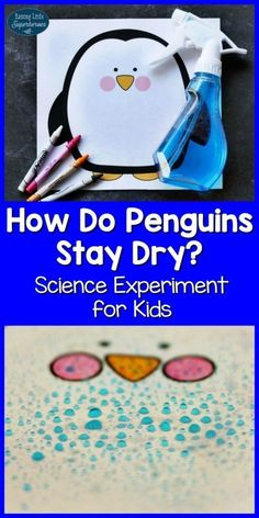 Penguin Feathers Science Experiment, Science Experiment for Kids, Penguin Science Experiment, How Do Penguins Stay Dry, Learning Resources, Learning Activities, Science Activities