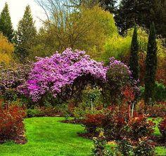 สวนสวยน่าเดินเล่น