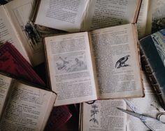bibbidi-bobbidi-book:  Day 25: Oldest I have quite a lot of...