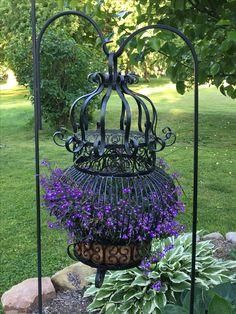 Flowering Birdcage