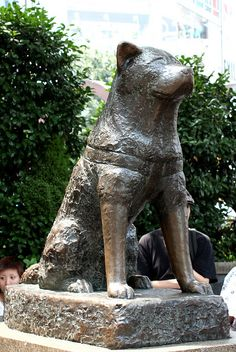 Hatchiko statue at Shibuya, Tokyo The love of a dog loyal even after death. Waited for his master at the train station until his death 11 years later. He would walk his master to the station and meet him when he came home.