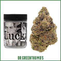 #420MailOrder #BestOnlineDispensary #BuyCannabisOilOnlineUK #BuyCannabisOnline #BuyCannabisWaxOnline #BuyCheapMarijuanaOnline #BuyLegalWeedOnlineCheap #BuyMarijuanaConcentratesOnline #BuyMarijuanaEdiblesOnline #BuyMarijuanaOnlineAustralia #BuyMarijuanaOnlineUK #BuyMarijuanaShatterOnline #BuyMarijuanaWaxOnline #BuyRealWeedOnline #BuyRealWeedOnlineCheap #BuyRecreationalWeedOnline #BuySkunkOnlineUk #BuyWeedCheapOnline #BuyWeedEdiblesOnline #BuyWeedOnline #BuyWeedOnlineCheap #BuyWeed Buy Cannabis Online, Buy Weed Online, Weed Strains, Buy Backpack, Edibles Online, Shopping Near Me, Medical Marijuana, Natural Healing, Airheads Candy