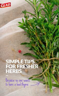 """Need to keep your herbs in better shape? Here's a how-to tip for keeping your herbs fresh! For most fresh herbs, just place in a wet paper towel then wrap in Press'n Seal to keep them fresh. Keep bag open and place in the crisper drawer of your fridge. For cilantro, trim the stems and place """"herb-onomically"""" upright in about 1-inch of water. Cover loosely with a Glad® Zipper Bag and place in the refrigerator."""
