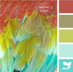 Bedroom colors by rosalyn