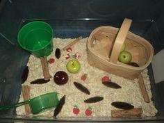 Our Apple Sensory Bin: In our apple sensory tub, we've included: 3 lbs of… Preschool Apple Theme, Fall Preschool, Preschool Crafts, Kindergarten Sensory, Sensory Tubs, Sensory Boxes, Sensory Play, September Preschool, September Activities