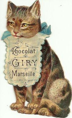 chocolat cat Vintage Cat, Images Vintage, Vintage Labels, Vintage Ephemera, Vintage Postcards, Animal Gato, Etiquette Vintage, Image Chat, Cats And Kittens