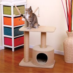 PetPals Eco Friendly Cat Tree | Furniture & Towers | PetSmart
