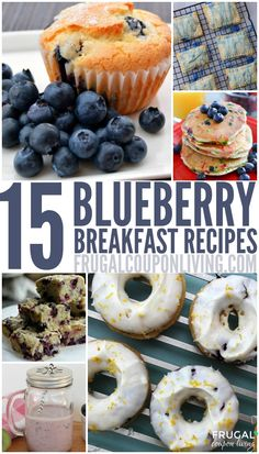 15 Blueberry Breakfast Recipes for the Entire Family 25 Blueberry Breakfast Recipes for the Entire Family on Frugal Coupon Living including Donuuts, Panckakes, Shakes, and Muffins. Blueberry Desserts, Blueberry Breakfast, Breakfast Bites, What's For Breakfast, Breakfast Recipes, Blueberry Doughnuts, Cake Mix Recipes, Fruit Recipes, Gourmet Cooking