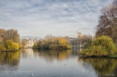 Popular on 500px : St James Park London by davidjlew