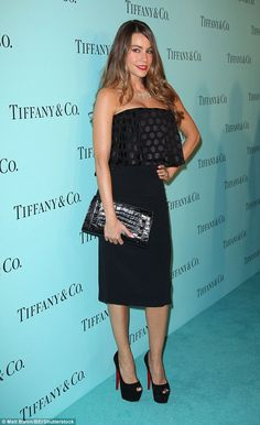Curves ahead: Modern Family star Sofia Vergara looked gorgeous in a strapless dress at a T...