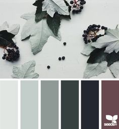 papered autumn | design seeds | Bloglovin