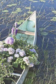 flowers in canoe.