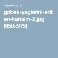gobek-yaglarini-eriten-karisim-2.jpg (650×975)