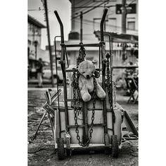 Teddy Bear in chains.