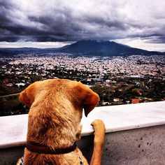 Athens' view from Penteli