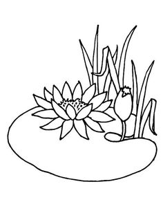 Super Coloring Pages, Flower Coloring Pages, Leaf Template, Flower Template, Chinese Crafts, Chinese Art, Small Rangoli Design, Frog Crafts, Fabric Postcards