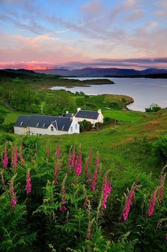 A wee Cottage in beautifull Scotland. I would so love to own one.