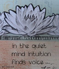 In the quiet mind...*