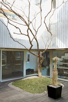 Four box-shaped structures, arranged around a central courtyard, make up this Seoul home. The courtyard is adorned with a single crepe myrtle, which sports red blossoms in summer.
