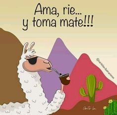 Motivational Quotes, Funny Quotes, Funny Memes, Great Quotes, Alpacas, Love Mate, Learning Spanish, Cute Illustration, Deco