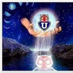Chile, Juventus Logo, Team Logo, Logos, World, Memories, Display, Chili Powder, Logo