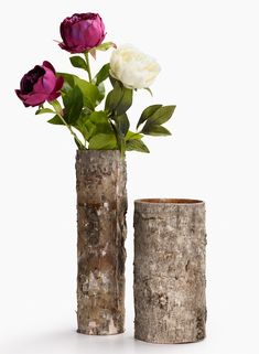 Birch tree bark glass cylinder vase NYC flower market wholesale supplies natural decor elements fall holiday wedding party centerpieces retail display
