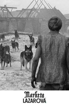 Marketa Lazarová Regie: Frantisek Vlácil Mit: Magda Vásáryová Demnächst im Kino und auf DVD & Blu-ray! Dvd Blu Ray, Wolves, Fictional Characters, Posters, Cinema, Pictures, Wolf, Fantasy Characters, Timber Wolf