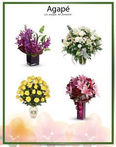006 Plants, Floral Arrangements, Magick, Plant, Planets